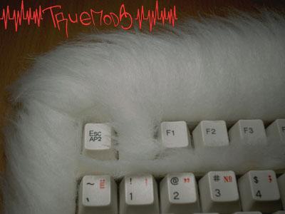 Меховая отделка клавиатуры